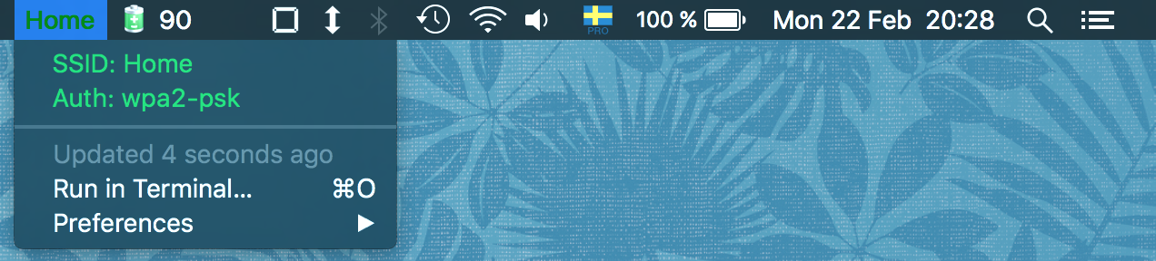 Image preview of ssid-info plugin.